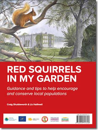 Red Squirrels in my Garden