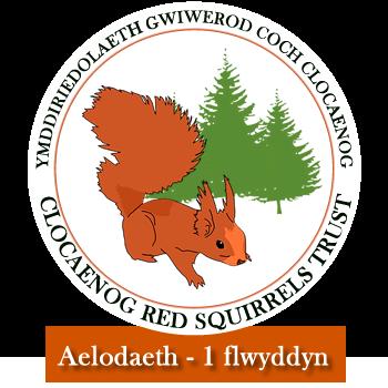 Aelodaeth 1 flwyddyn